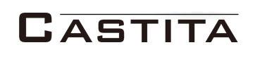 Логотип Castita (Кастита)